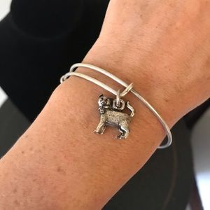 Alex and Ani - cat charm bracelet